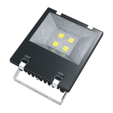 Thomson Projecteur IP65 50W 4000K TFL4K50BL120