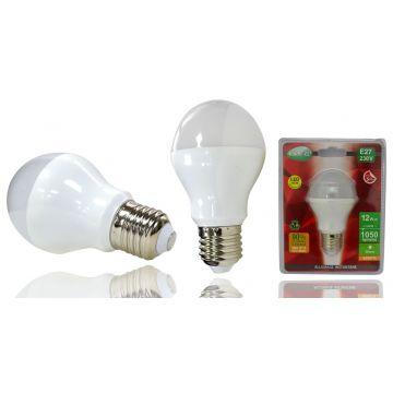 Ampoule LED E27 12W 3000°K VISION-EL 7429