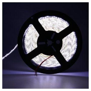 Ruban LED 5M double rang blanc froid SMD5050 IP20