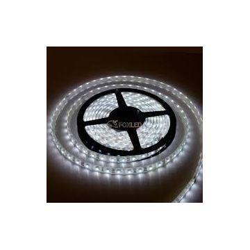 Ruban LED 5M blanc froid SMD3528 450 lumens /M