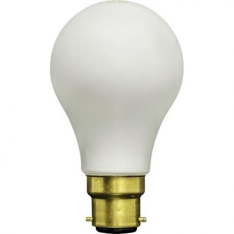 Ampoule LED B22 4,5W 2700K Thomson THOM63648
