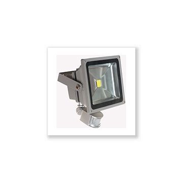 PROJECT LED VISION-EL 230 V  30 WATT 3000°K GRIS + DETECT IP65