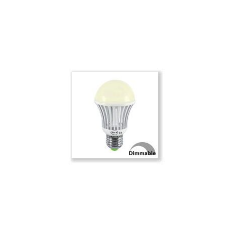 Ampoule LED Vision-EL Globe E27 10W 3000K  dimmable 7388CD