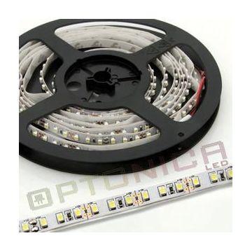 LED STRIP 3528 60 SMD/m Rouge NON-Etanche - Blanc BASE