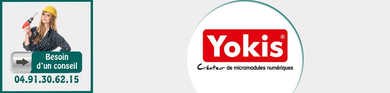 Micromodules Yokis