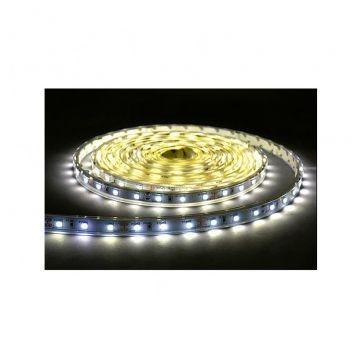 BANDE LED BLANC 6000°K 5 M 30 LEDS ET 7,2 W / M IP2024V
