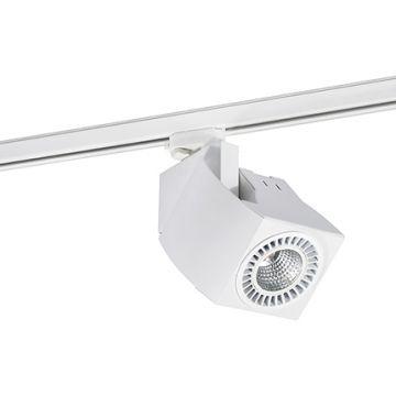 FOKUS BLANC LED 18W 2700K 20° DALI