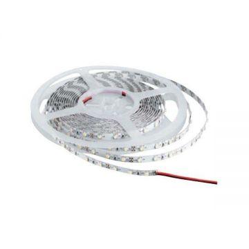 Ruban LED 24v 4.8W/m 3000k - 360LM/M IP65