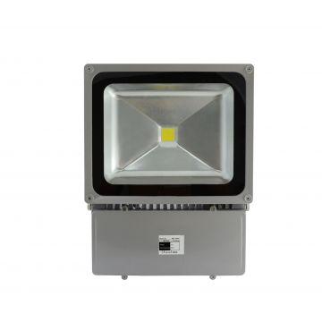 Projecteur LED 100W 3000K Gris VISION-EL 8046