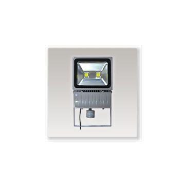 Projecteur LED avec détecteur 100W 3000K Gris VISION-EL 8041