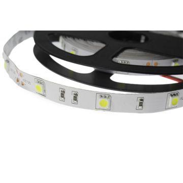 BANDE LED COULEURS+BLANC 5 M 60 LEDS 14,4 W / M IP20